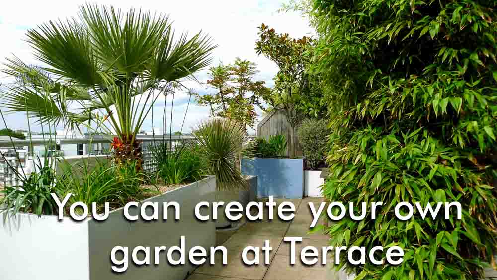 You can create your own garden at Terrace