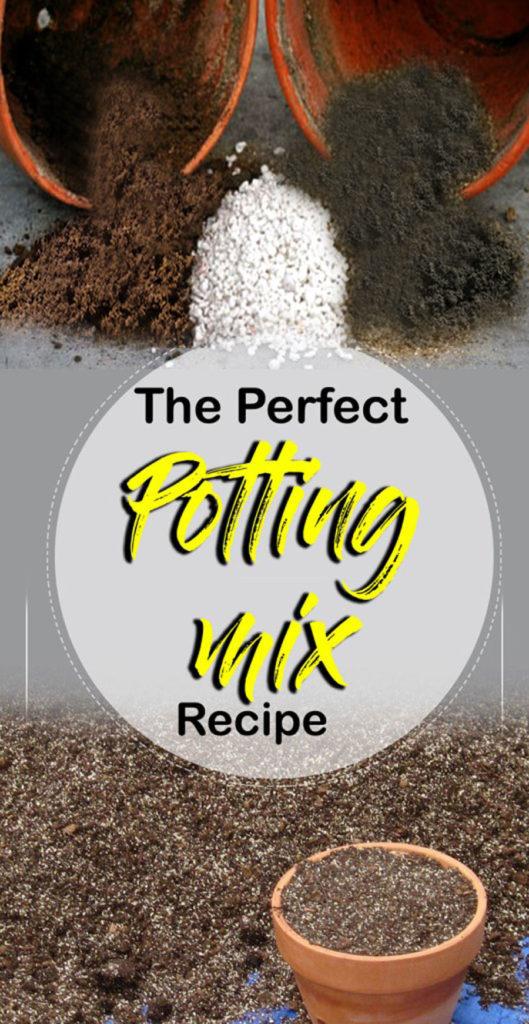 Potting Soil | cactus soil | potting mix