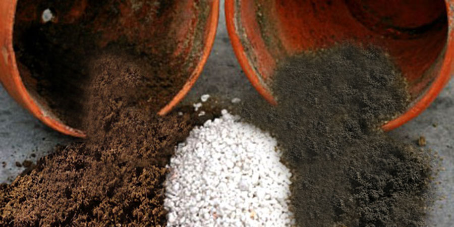 How to make your own Potting Soil | The Perfect Potting mix Recipe