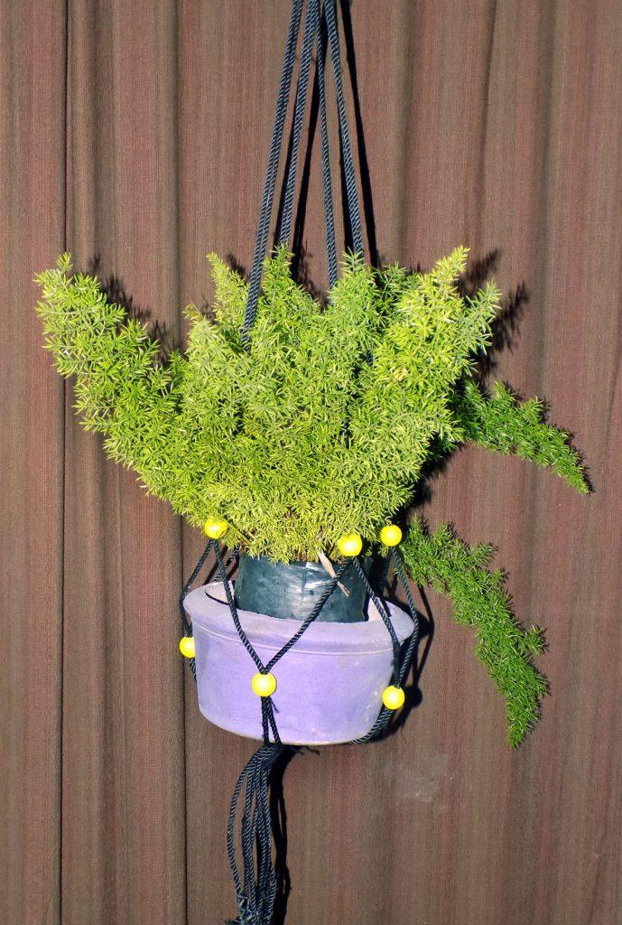 hanging bosket9