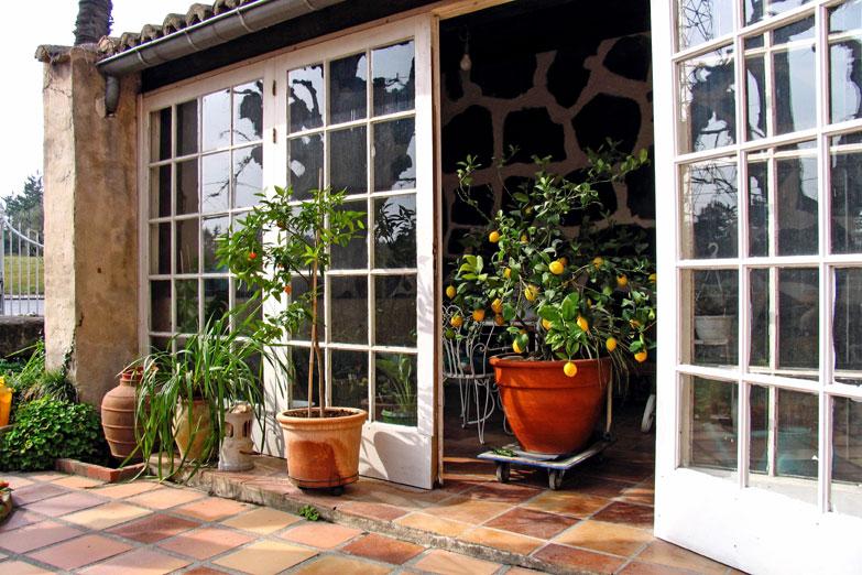 11 Small space gardening ideas  | Container gardening| Balcony garden