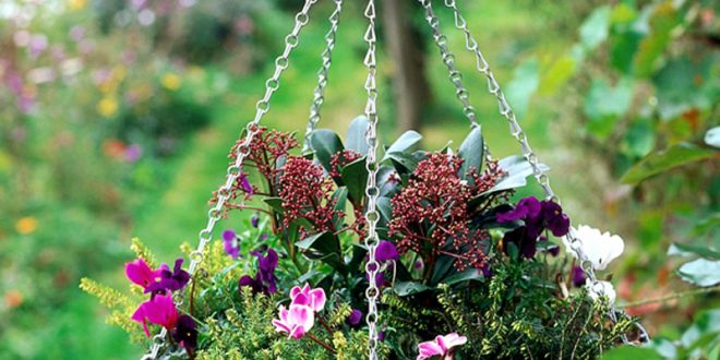 Hanging garden