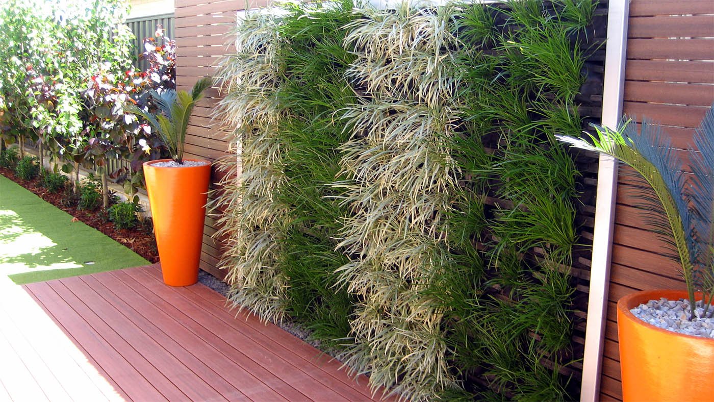 How to start Vertical Garden | Living walls