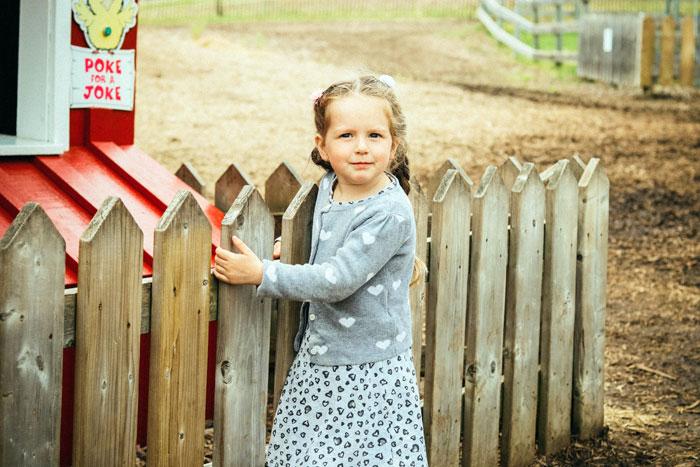 cheap garden fences