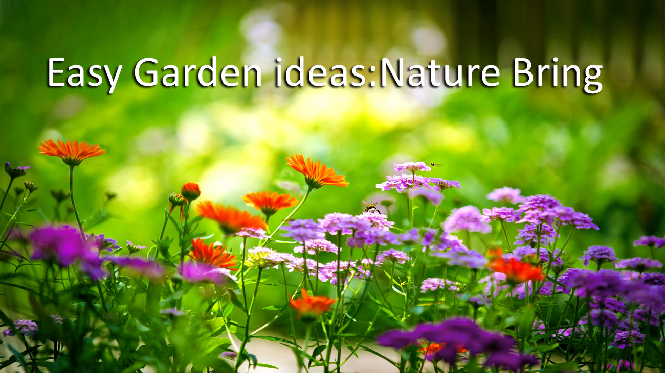 7 Easy Garden ideas | Make your garden beautiful