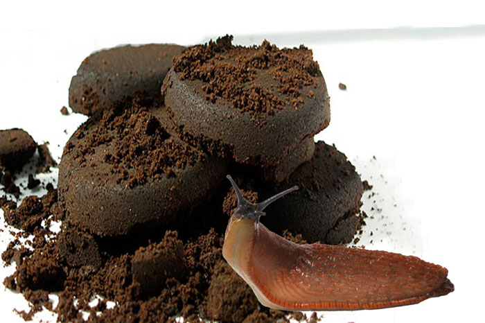 Coffee grounds as pesticide