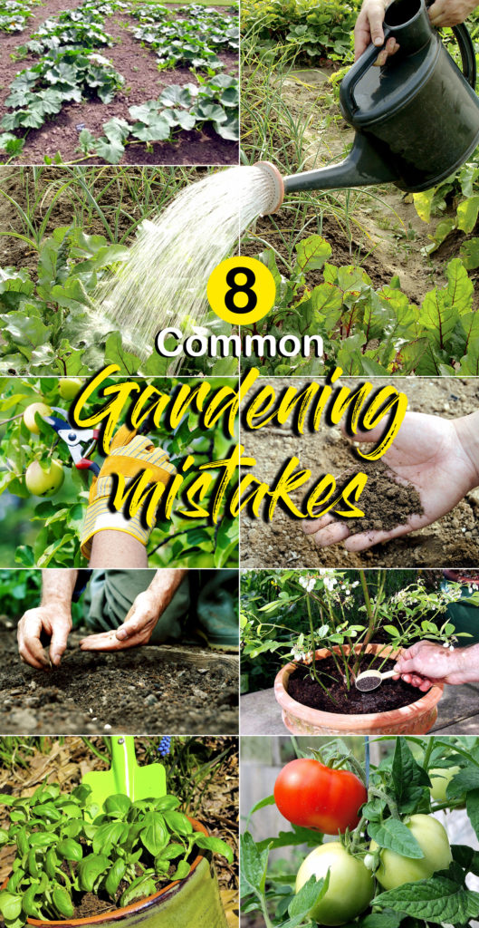 Common gardening mistake