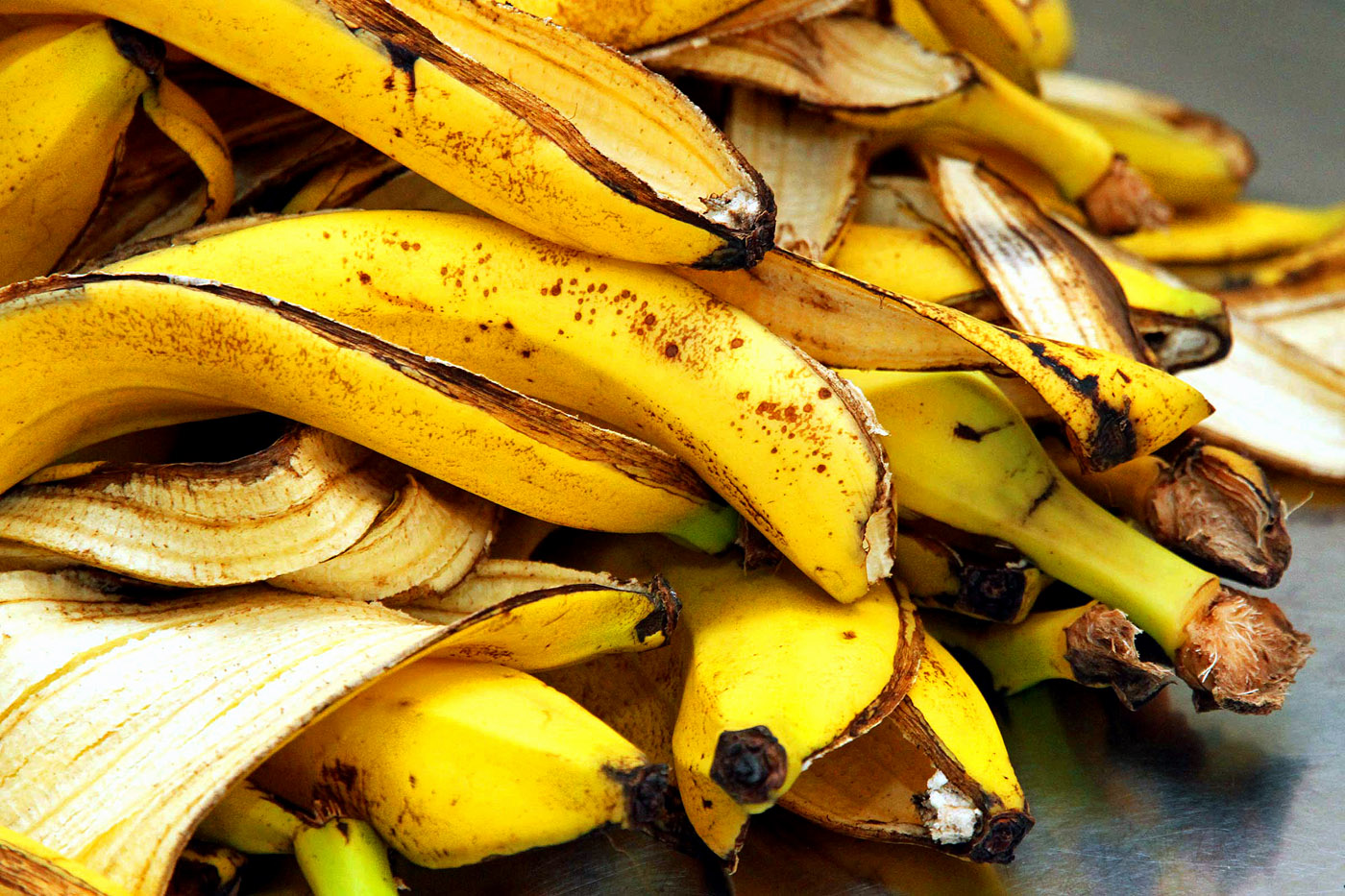 9 ways to make use of Banana Peels in the Garden | Nature Bring