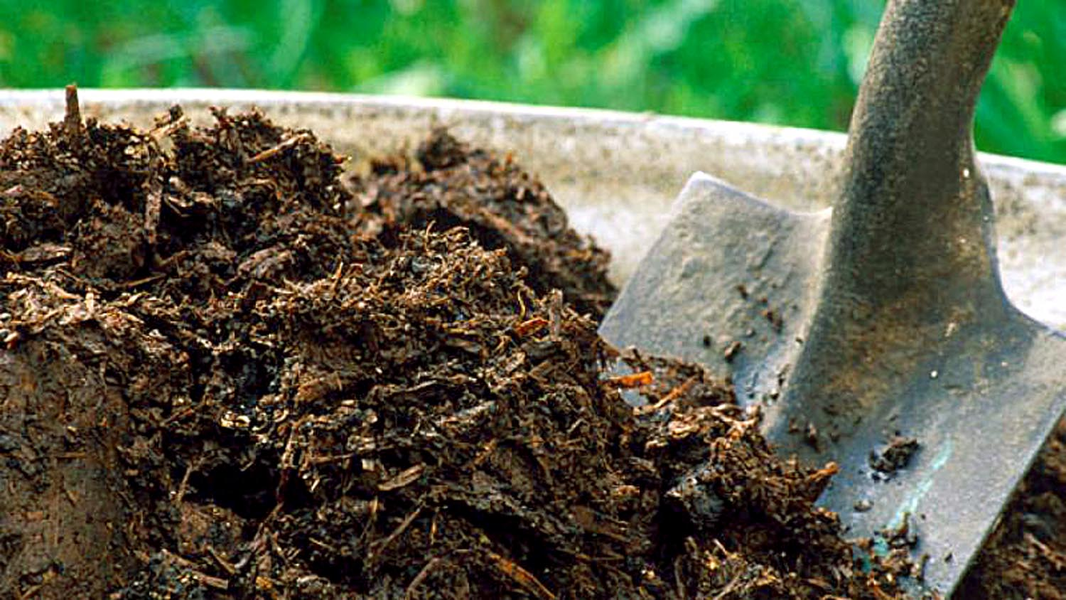 How to improve Garden soil health | Garden soil | Healthy Soil