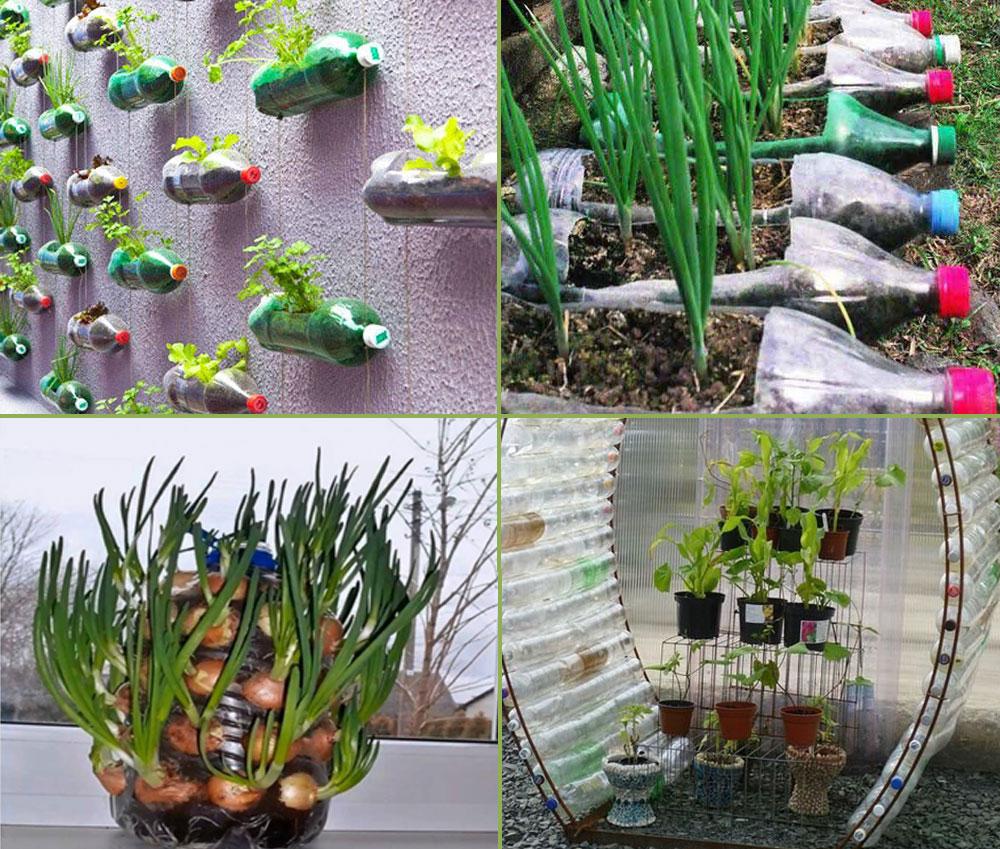 9 Diy Plastic Bottle Garden Projects Naturebring