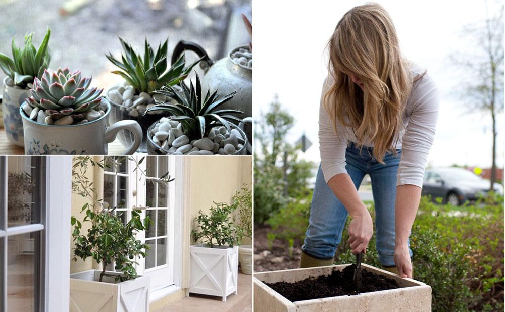 11 DIY Planters can enhance your garden beauty | DIY planter ideas