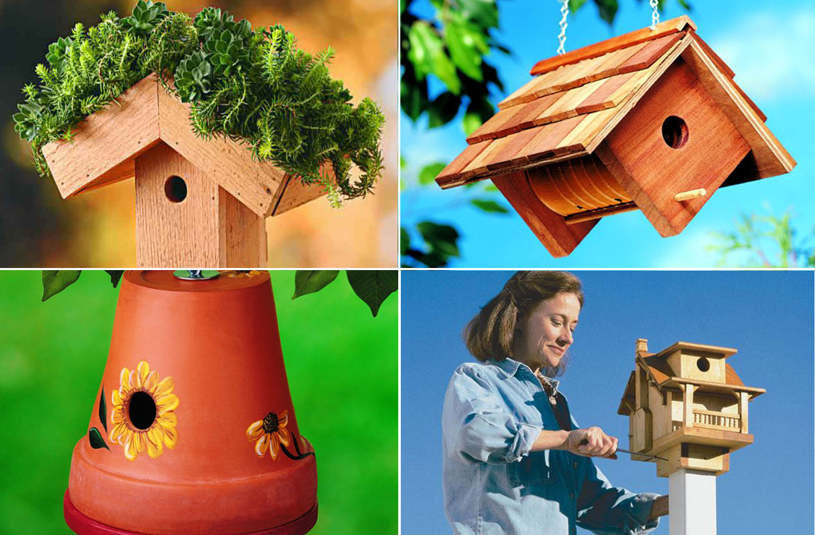 10 Charming DIY Birdhouse | plans and ideas | Nature Bring