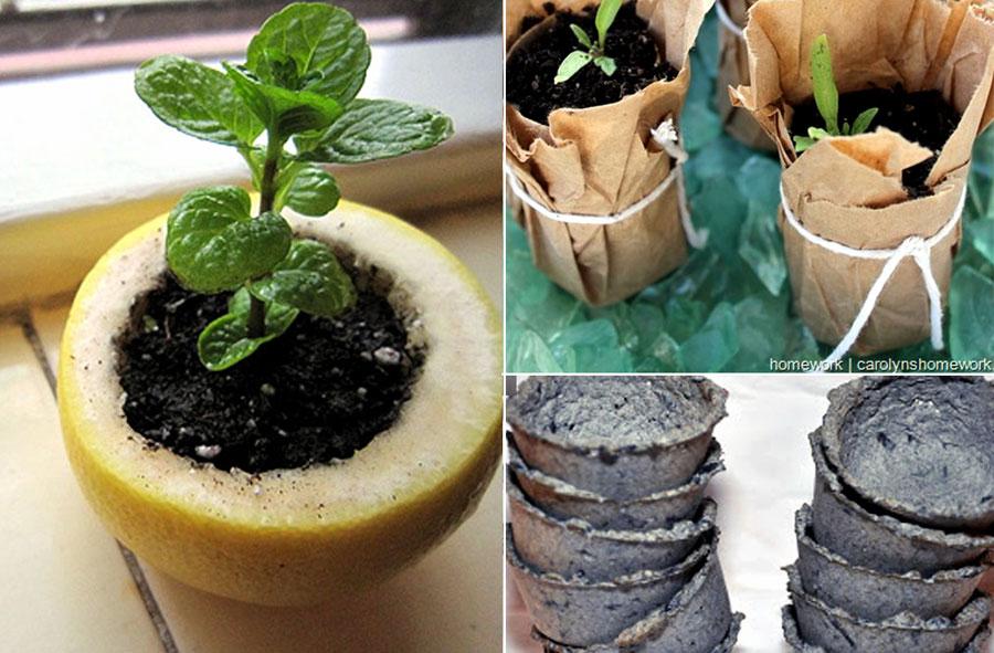 09 Perfect DIY Seed Starter | DIY seed starter pots