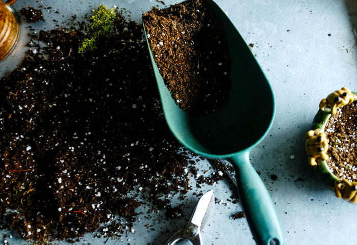 Potting mix | Seed Starting Mix