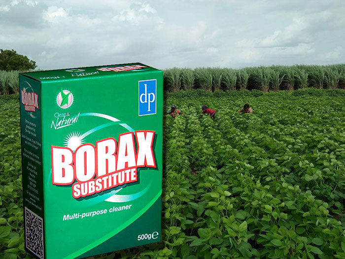 Surprising Uses of Borax in the Gardens | Nature Bring