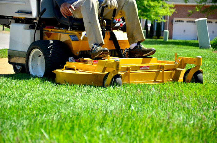 How to Care for Lawn in Summer | Lawn care tips & tricks